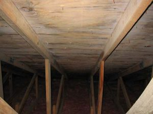 Attic mold growth Roof white mold growth from poor ventilation was toxigenic, pathogenic, and opportunistic mold Aspergillus.
