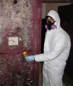 Suited for safety Mold growth up walls required a suit and mask for safety.